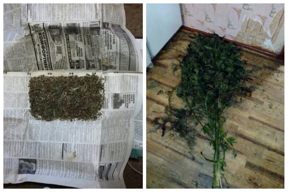 Марихуана Закладка Нальчик Трамал Телеграм Уфа
