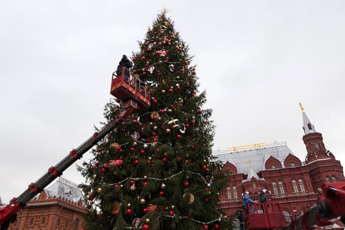 конце новогодние елки в центре москвы снегири фото лучшие фотографы астана